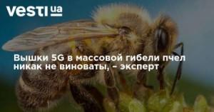 dce847222af530e5503c09da7ec12b03